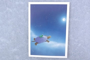 Gift or Enclosure Card by Jonathan Meader - Soaring (with Turtle and Toad)