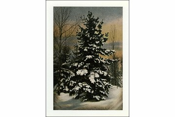 Holiday Tree Tufted with Snow Greeting Card