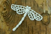Darling Ivory Dragonfly Lace Motif - Can Double as Faerie or Angel Wings