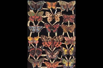 Reproduction Die Cut Chromolithograph Embossed Reliefs - Butterflies (2) and Moths