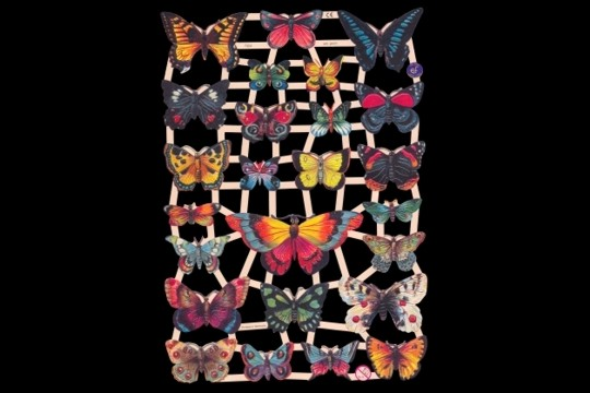 New Butterflies #2 - Reproduction Chromolithograph Die-Cut and Embossed Scrap Reliefs