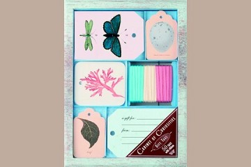 Decorative Gift Tags in Keepsake Box:  Cabinet of Curiosities